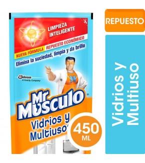 LIMPIADOR DE VIDRIOS MRMUSCULO DPK 450C